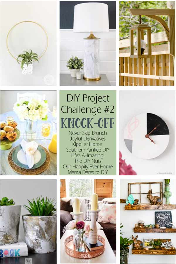 DIY Project Challenge