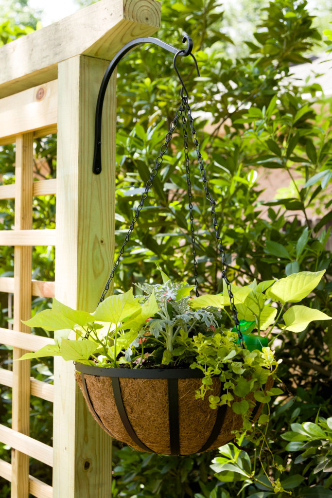 Hanging planter, garden screen trellis