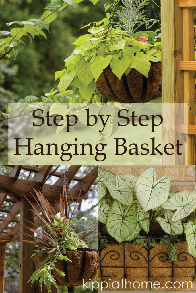 Hanging Basket Step by Step Guide, grab your copy today