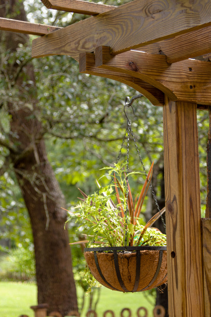 Old trellis made new with hanging baskets, easy hanging basket to create now