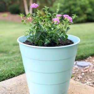 Melissa's Decorative Planters DIY, #2019gardentour
