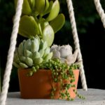 Boho chic hanging planter