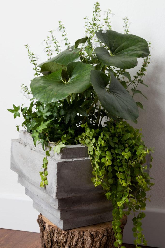 Sean's planter