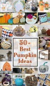 50 plus Pumpkin Ideas