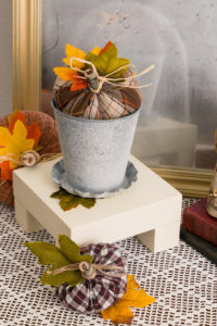 Display pedestal with plant and pumpkin