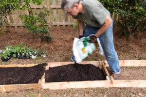 Filling the frames with garden soil