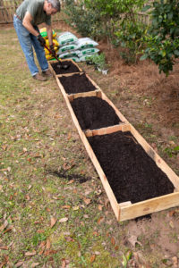 Garden beds filled with soil