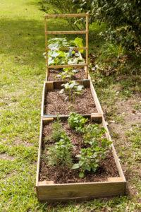 Second Raised Garden area