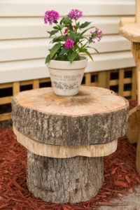 Side table made from a fallen tree