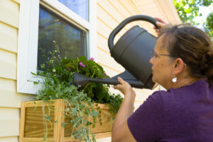 Installing the plastic planter into the window flower box