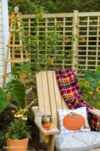 Chair with pumpkin pillow, trellis and obelisk