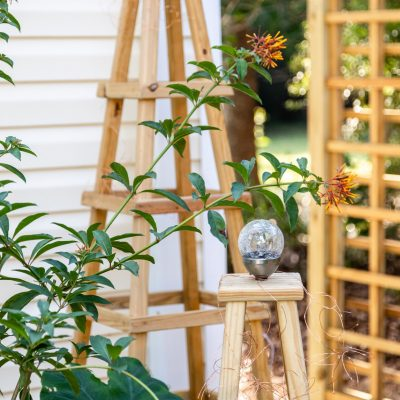 DIY Garden Obelisk – Outdoor Projects