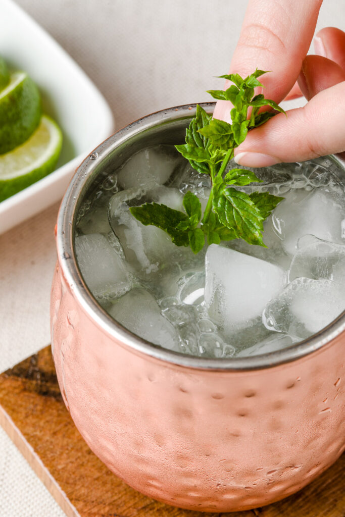 Garnish with Fresh spring of mint