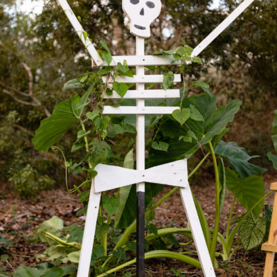 How to Make Halloween Skeletons