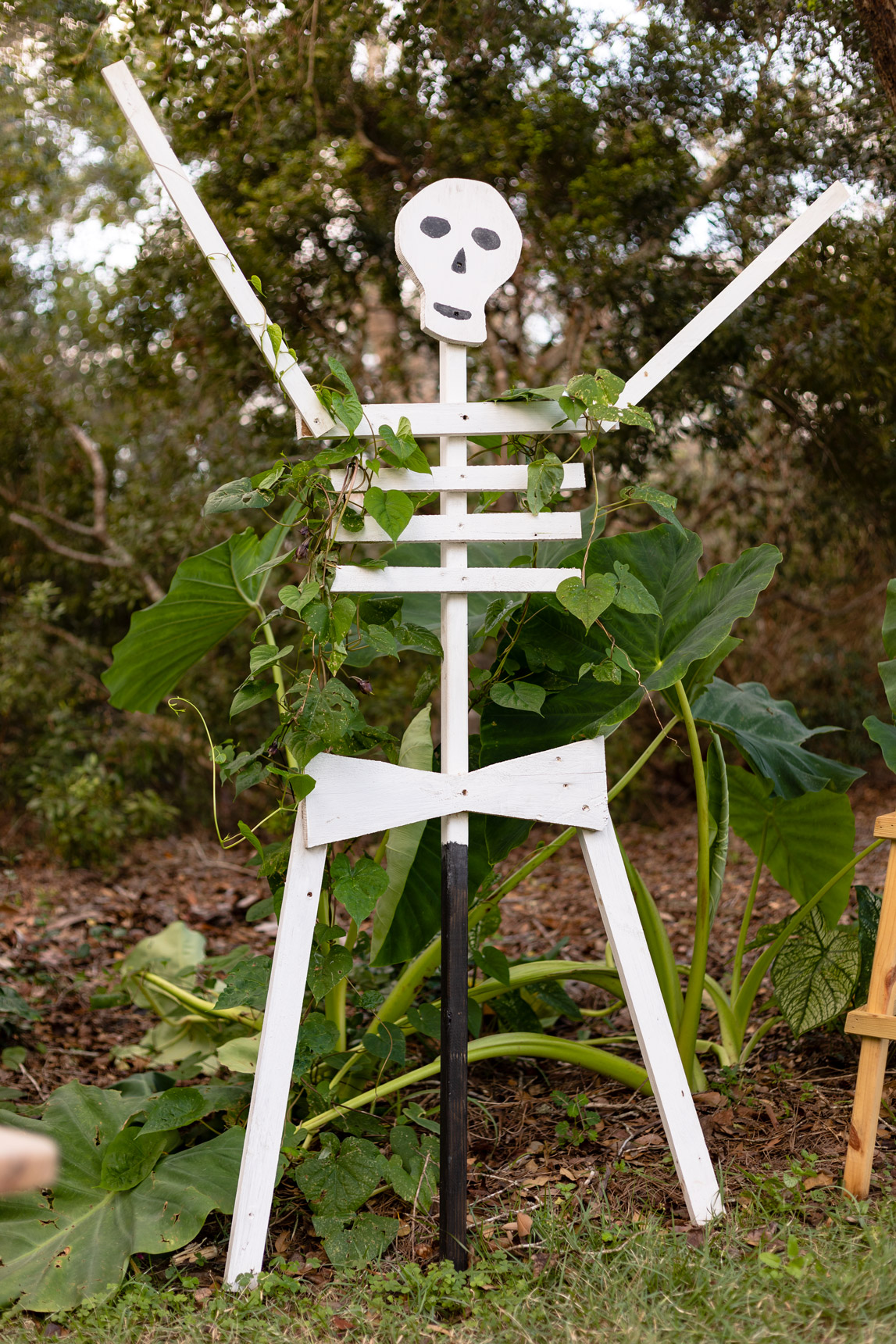How to Make a Wooden Skeleton