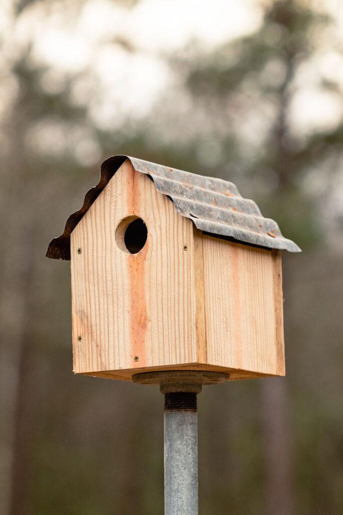 Rustic birdhouse ready for the birds