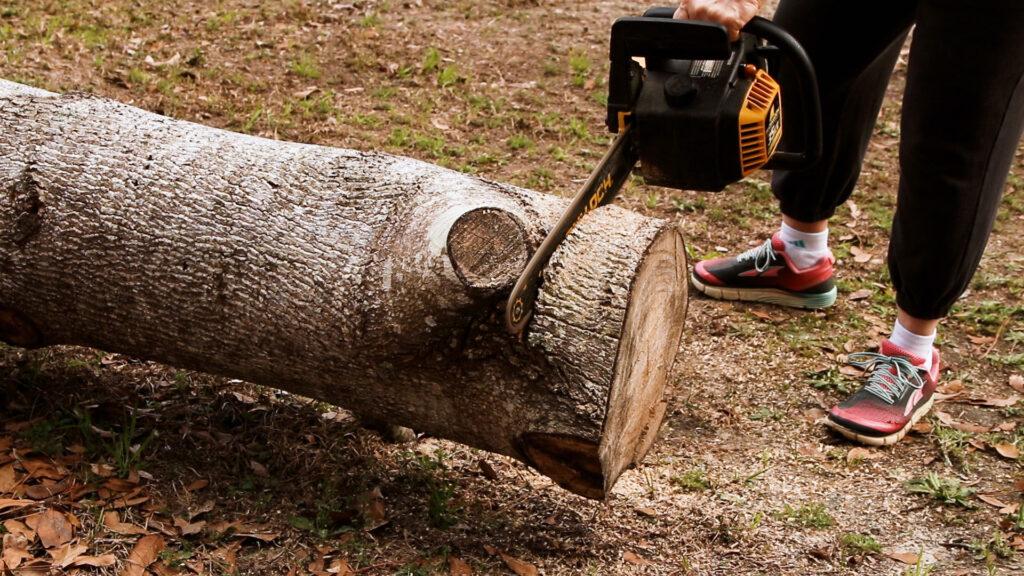 Cutting the wood slice