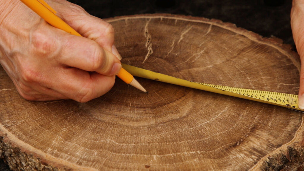 Marking the center of the wood slice