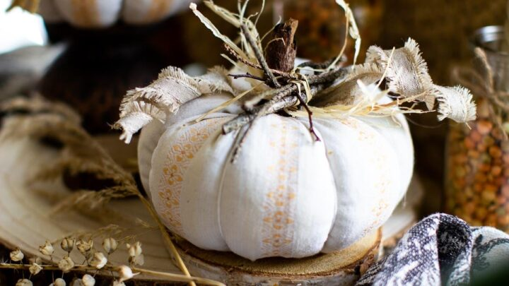 White fabric pumpkin with a stick stem sitting on a table