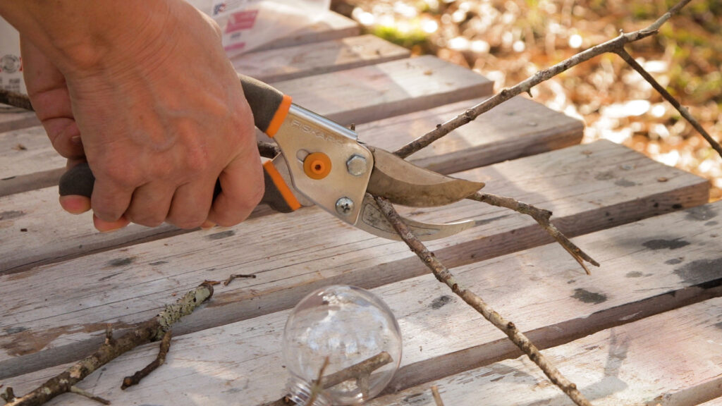 Cutting sticks with garden snips on the a wood table